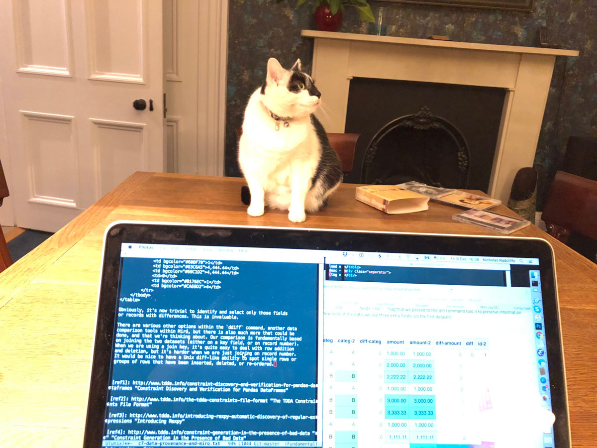 Alfie, our Social Media Manager, inspects progress on the blog post.